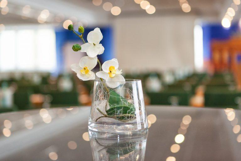 Tagungsdetail Blume-squashed